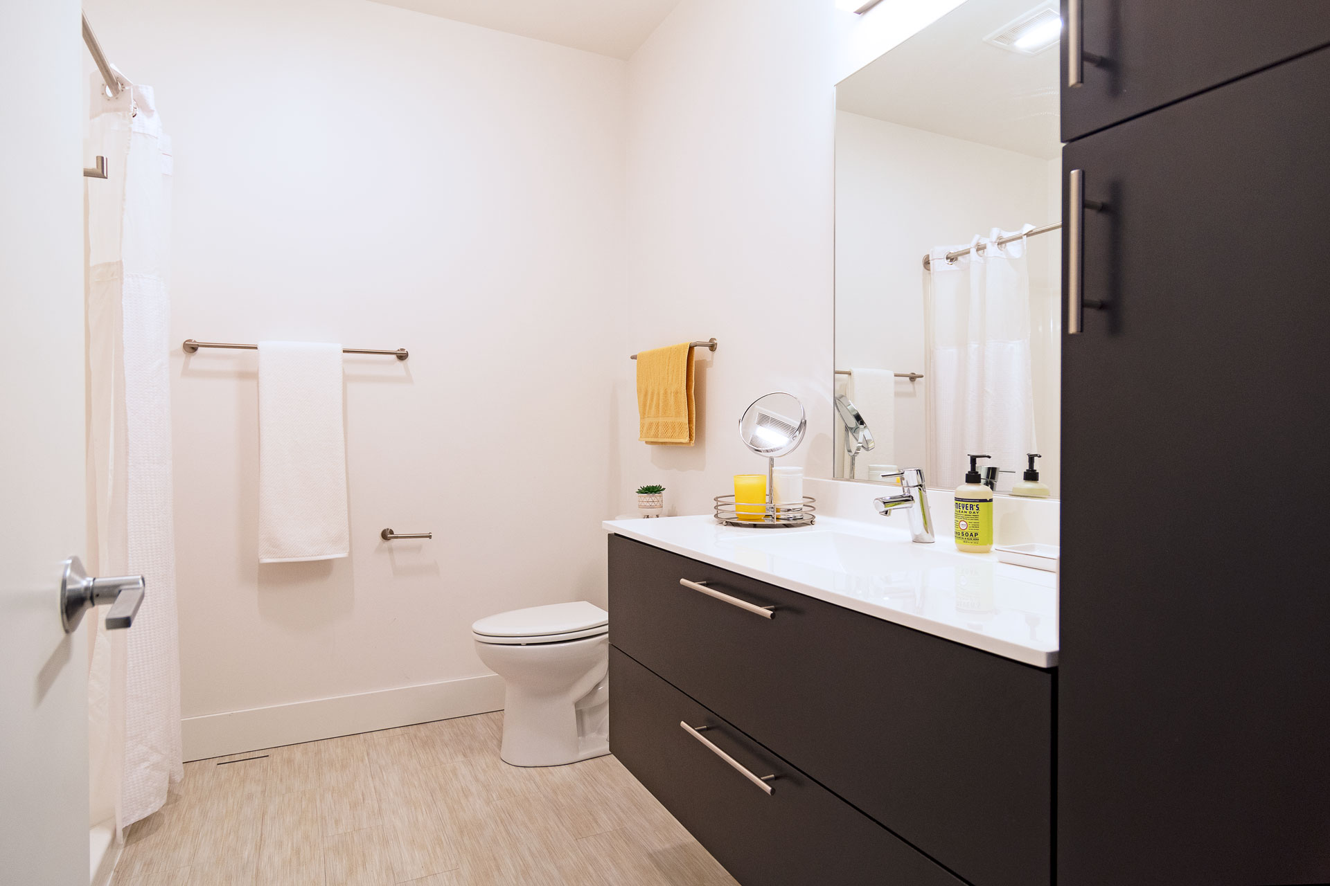 Large Cabinet Space in Bathroom
